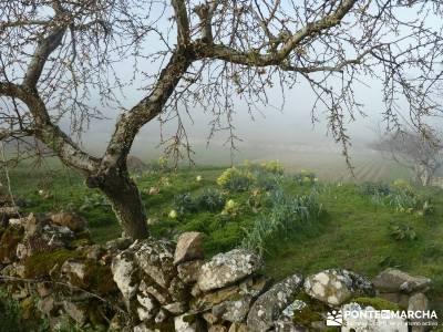 Parque Natural Arribes de Duero;viaje naturaleza fines semana grupos senderismo madrid